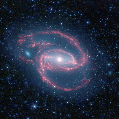 NASA's Spitzer Space Telescope has imaged a wild creature of the dark -- a coiled galaxy with an eye-like object at its center.